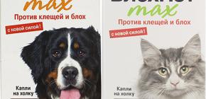 Means Blohnet pour les chats et les chiens: avis et instructions d'utilisation