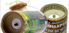 Bombes fumigènes insecticides pour tuer les cafards dans l'appartement