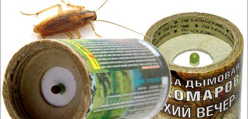les punaises de lit les cafards les puces les fourmis les papillons de nuit et comment s 39 en. Black Bedroom Furniture Sets. Home Design Ideas