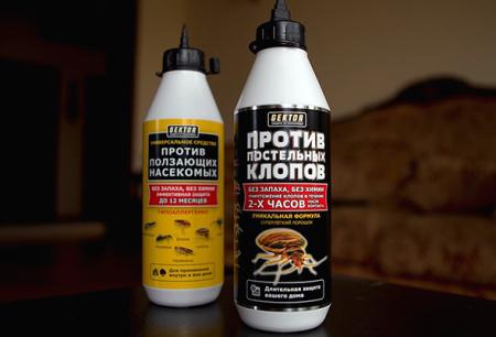 Hector insecticide contre les punaises de lit et autres insectes