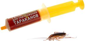 Remèdes contre les blattes à la seringue (gels): examen des médicaments et des nuances de leur utilisation