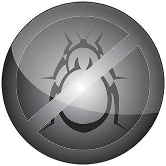 bedbugus-fr.biz
