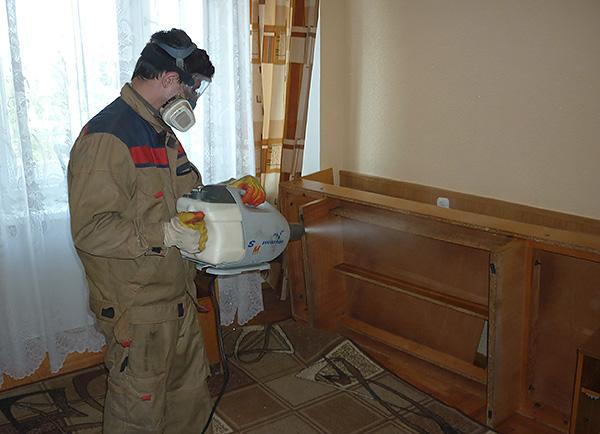Appeler le contrôle des nuisibles est considéré comme le moyen le plus efficace et le plus rapide de se débarrasser des insectes dans la maison.