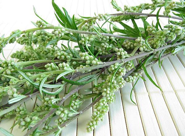 La plupart des remèdes populaires contre les punaises de lit sont nettement moins efficaces que les préparations insecticides modernes.