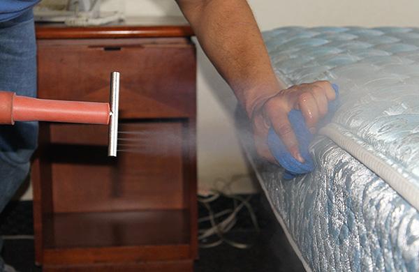 Aujourd'hui, il existe de nombreuses méthodes pour lutter contre les punaises de lit, mais toutes ne sont pas aussi efficaces ...