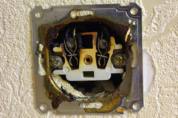 Les punaises de lit peuvent entrer dans l'appartement par leurs voisins via des prises électriques.