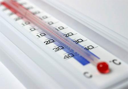 Traitement thermique des punaises: traitement de congélation ou thermique (ou vapeur)