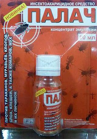 Remède contre les insectes domestiques
