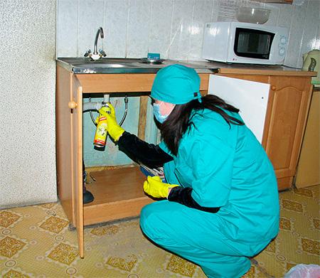 Les pulvérisations doivent être pulvérisées dans des endroits où les insectes peuvent s'accumuler.