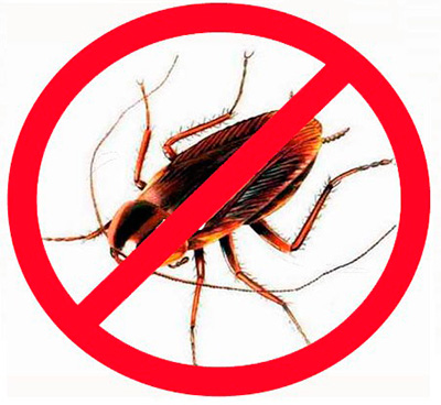 L'utilisation d'insecticides modernes
