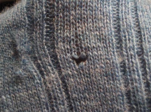 Ce trou dans le pull a laissé les larves de la teigne