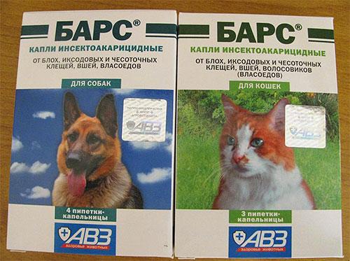Laisse le léopard des puces pour chiens et chats
