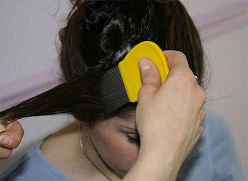 Si vous choisissez une méthode mécanique pour enlever les lentes, vous devez vous peigner les cheveux avec soin, mèche par mèche.