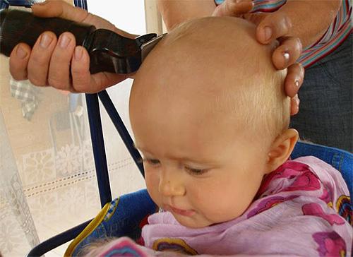 Le meilleur moyen de se débarrasser des poux consiste à se raser les zones du corps infectées par les poux.