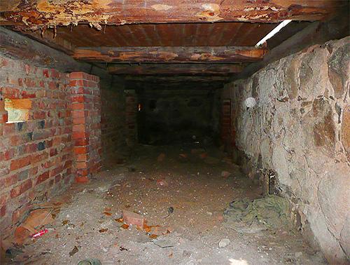 Les appartements du sous-sol peuvent souvent apparaître dans des appartements au premier étage.