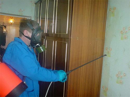 Pour vous aider à vous débarrasser des puces domestiques, vous pouvez faire appel à un professionnel de la lutte antiparasitaire.