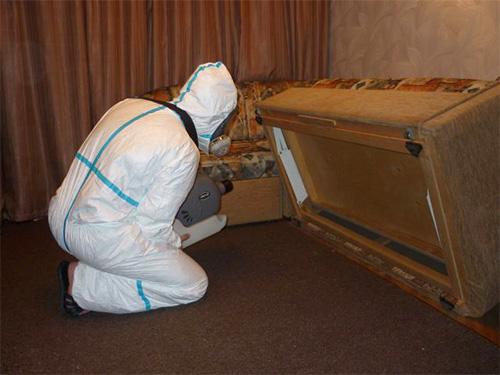 Sur la photo, un spécialiste de la lutte antiparasitaire traitera la maison des insectes à l'aide d'un générateur de brouillard froid.