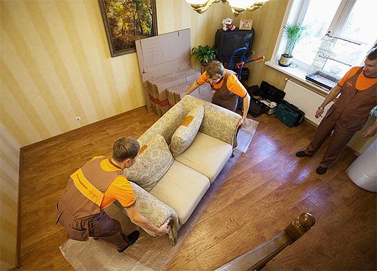 Les spécialistes de la désinfection moyennant des frais supplémentaires peuvent préparer eux-mêmes la salle pour le traitement des insectes.