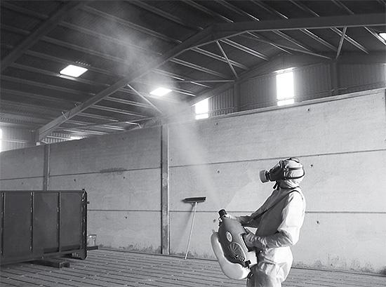 Pour traiter de grands locaux avec des insectes sans appel de professionnels, cela ne suffit souvent pas.