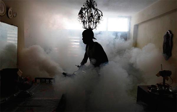 Lors du traitement des locaux avec une brume chaude, un aérosol insecticide très fin est également créé.