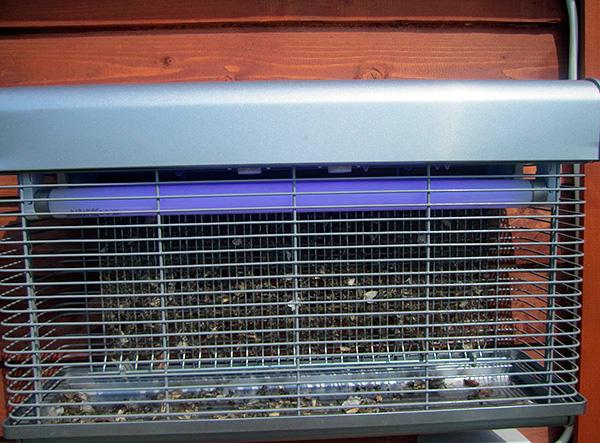 Les exterminateurs électriques attirent les insectes volants à la lumière d'une lampe à ultraviolets, puis les détruisent avec une décharge électrique.