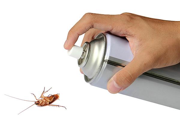 De nombreux agents de cafards et d'autres insectes volants et rampants contiennent des pyréthroïdes comme principes actifs.