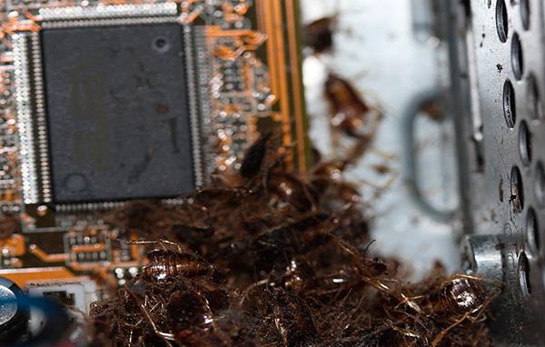Ne dirigez pas le spray dans les ouvertures des appareils électroniques.