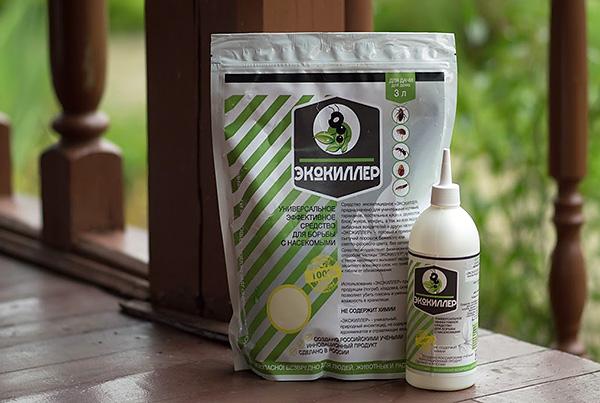 La poudre insecticide Ecokiller détruit efficacement non seulement les cafards, mais également de nombreux autres parasites et parasites.