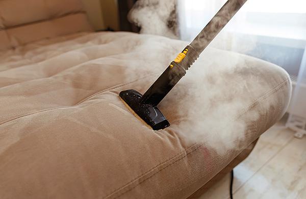 La vapeur chaude d'un nettoyeur à vapeur est capable de réchauffer le tissu à une profondeur considérable, détruisant efficacement les tiques et leurs œufs.